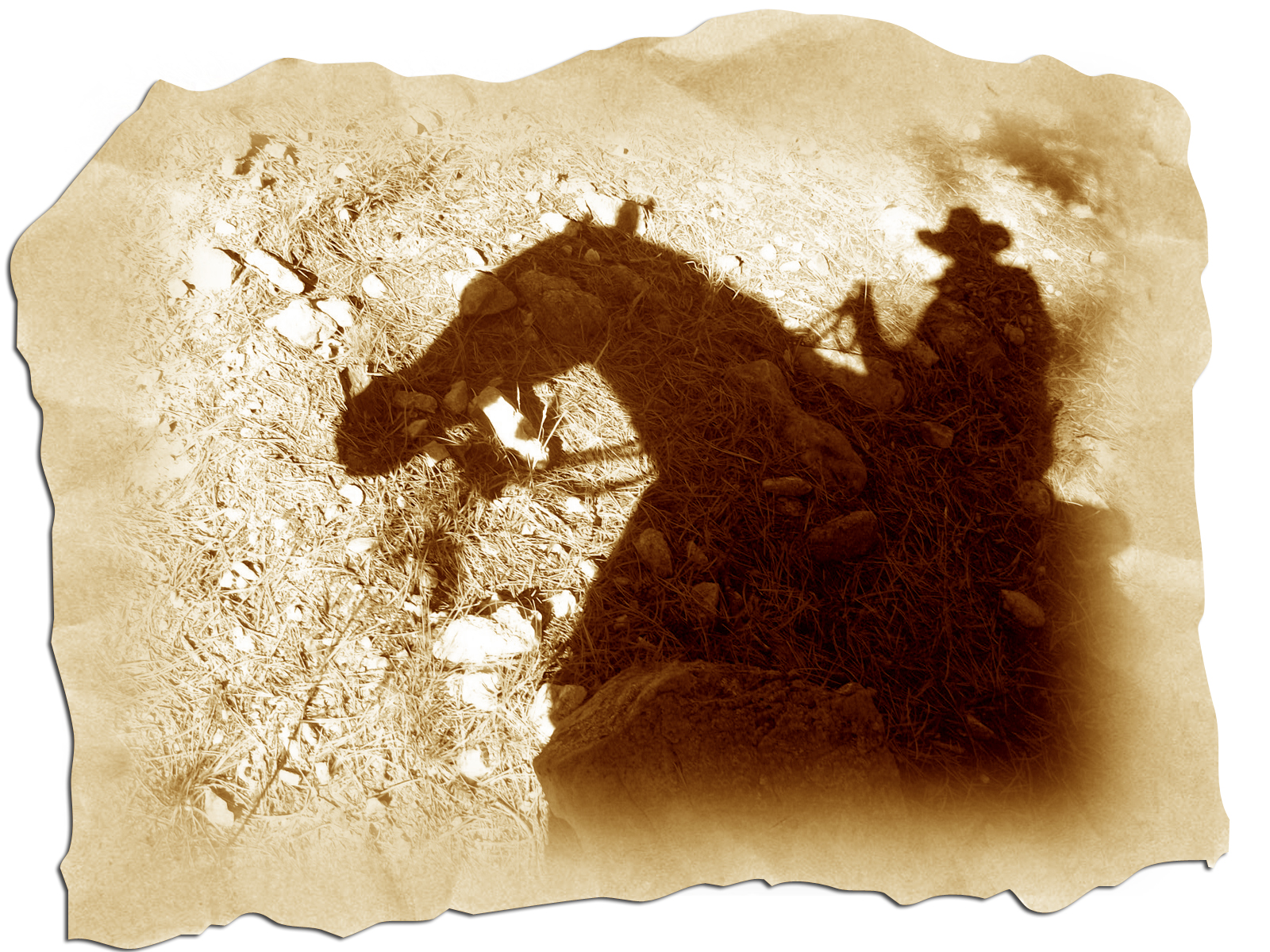 January's Exercise – Be A Shadow Rider